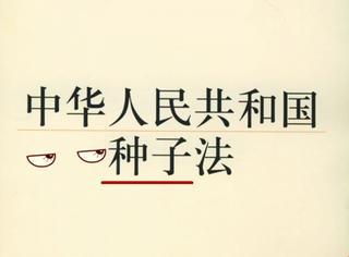 """中国出台""""种子法"""",网友:啥种子?"""
