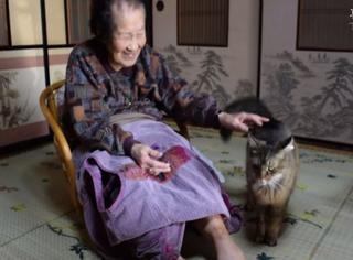 萌宠 | 好神奇,这只猫咪连续两年为老人送了800封信