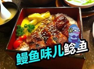 """日本人可真厉害:居然研发出""""鳗鱼味儿鲶鱼""""!"""