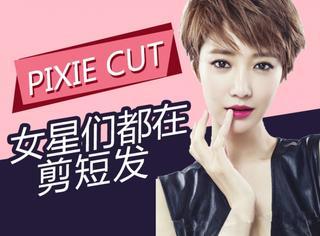 女明星扎堆剪了Pixie头 但你的脸型究竟适不适合?