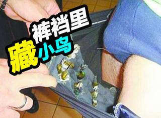 裤裆藏鸟,嘴里含蝌蚪,飞机安检被拦下的东西太奇葩!