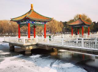 你只看到了北京的大雪、西安的银杏,而我们却帮你收集了24小时的中国