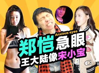 动新闻 | 唐嫣演面包,郑恺跑男急眼,大陆小宝滴血认亲