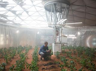 很快我们就能像马特·达蒙一样在火星上种土豆了...