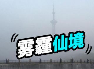 北京PM2.5严重爆表!我们又过上了仙一般的生活!