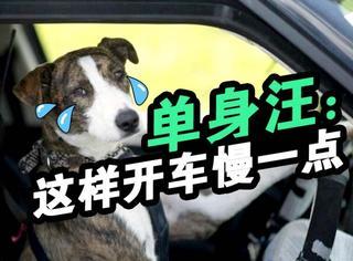 """来自单身狗的报复,天王郭的""""慢一点""""快被玩坏了"""