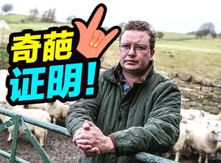"""他自费14万花1年时间,证明""""我的羊是我的羊"""""""