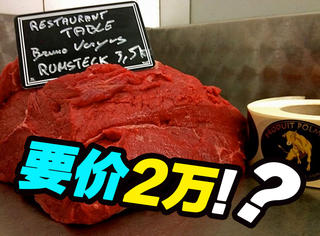 这块牛肉要价2万,只因它被时速120公里的冷风吹过...