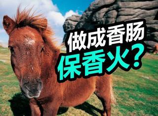 为了避免矮种马灭绝,他们把马肉做成了香肠…