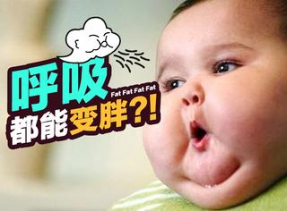 真相帝 | 最新研究:空气污染让你喘气都会变胖