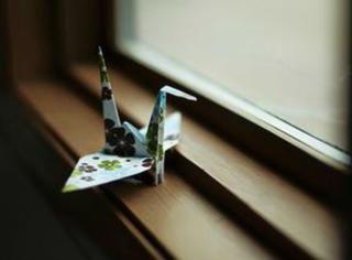 这位美男子,把千纸鹤玩出了 365 种花样
