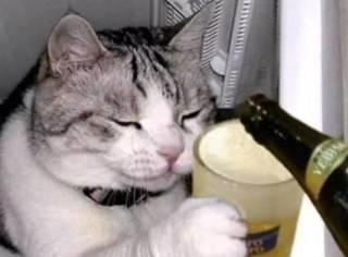 看你们以后还敢不敢喝醉酒