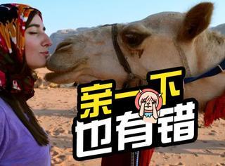 婆婆逼儿子离婚,原因竟是儿媳亲了骆驼