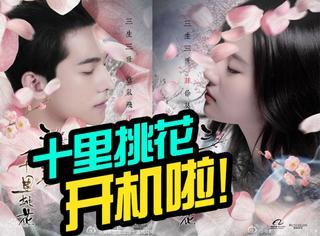 《十里桃花》开机,杨洋刘亦菲都来了,虐恋就要拉开帷幕了