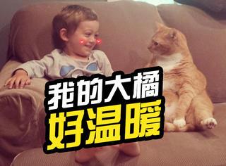 萌宠 | 它曾因贪吃被退养,但现在却是陪伴弟弟的大暖猫!