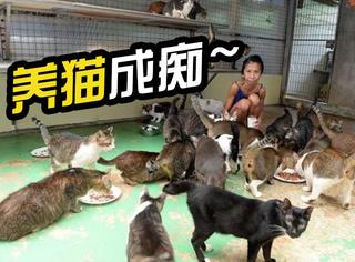 养猫成痴,女子养150只猫,自己瘦成皮包骨