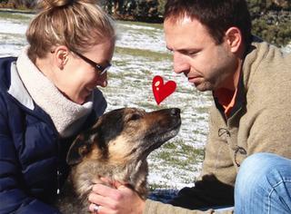 相伴15年,主人记录了爱犬离别的最后一天