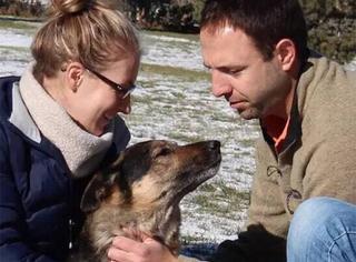 萌宠 | 狗狗的自白:在这个世界的最后一天