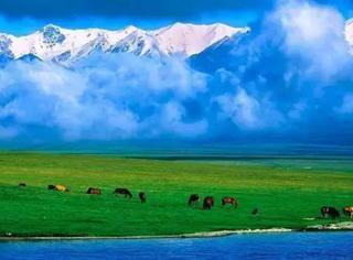 左手西藏,右手新疆