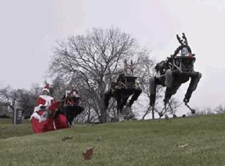 过圣诞的正确姿势:狗带!