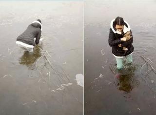 女学生为救野兔跳冰湖,网友:现已加入KFC豪华午餐