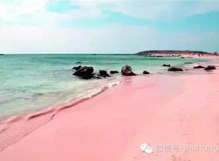 这世界上唯一的粉色沙滩,世界上最性感的海滩你去过吗?
