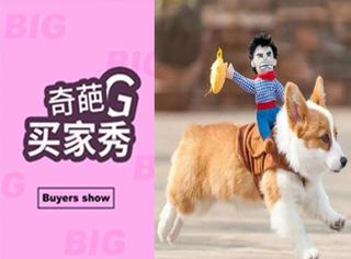 奇葩买家秀 | 狗狗穿上这魔性的动感牛仔衣,瞬间疯狂了!