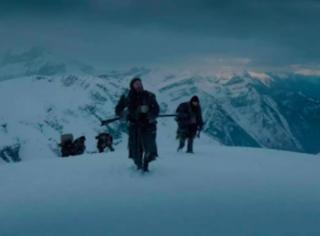 《荒野猎人》:鲜血与呻吟下的残暴复仇