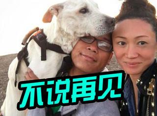 主人为陪伴爱犬生命的最后一程,带它环游美国