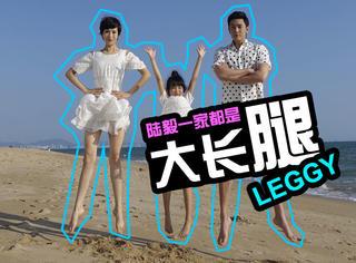 陆毅晒全家出游照,这家人的大长腿连起来能绕地球一圈!