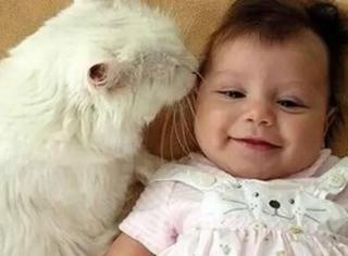 谁说有了小宝宝就不能养猫的?