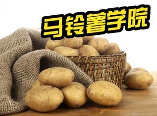 """云南一大学打算设立""""马铃薯学院"""""""