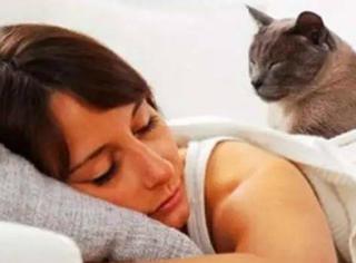 和喵星人一起睡觉是一种怎样的体验?