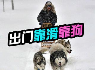 美国遭遇超级暴风雪,出门不是靠滑就是靠狗