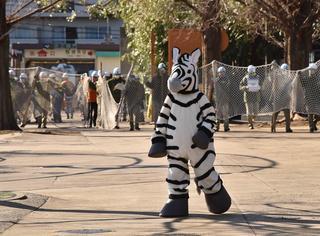 """追到就让你嘿嘿嘿:日本动物园来了一场""""动物逃亡""""大演习"""