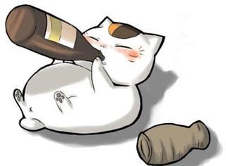 酒后你能干出啥出格事?