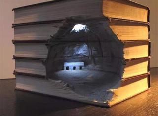 书雕 | 书中除了黄金屋和颜如玉竟然还有这般美妙的世界