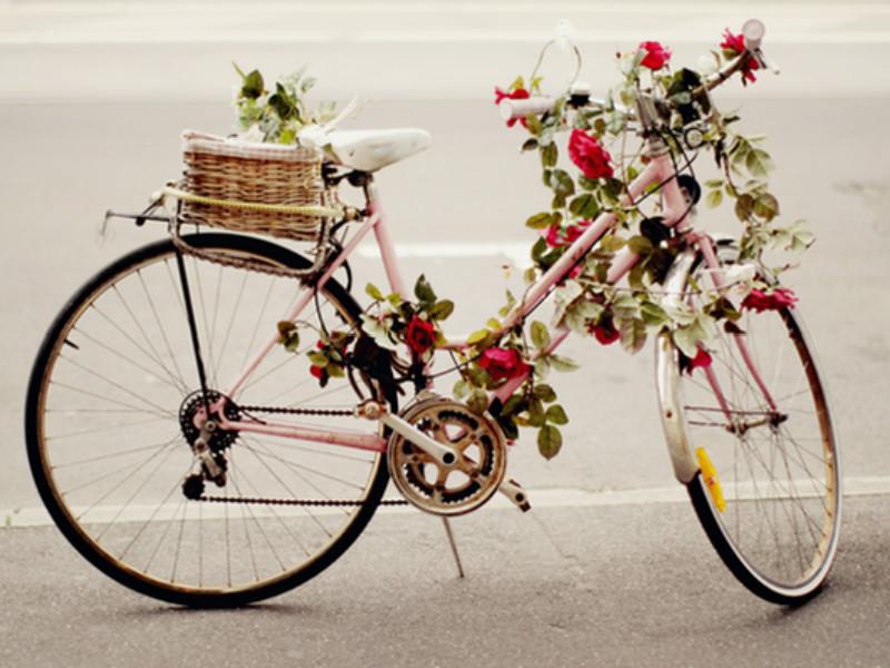 在日本,为何自行车如此普及?