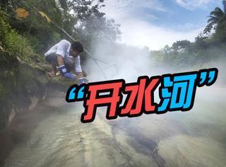 """这条4英里长的""""流动开水河"""",藏在亚马逊丛林清炖牛蛙"""