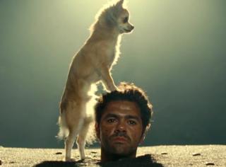 奇葩电影我看得多了,狗哔人还真是头次见!