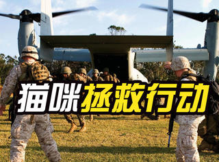 为救小猫,美军把直升机拆了个洞