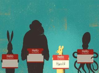 你的韩文名字是什么?