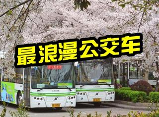 武汉最浪漫公交车519路1天后停运,它承载了太多人的幸福!