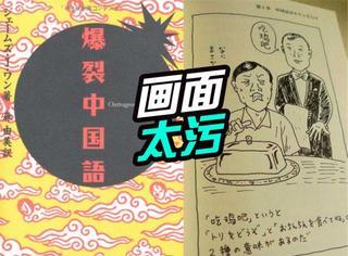 找到一本日本人用来学中文的书:画面太污,网友已爆裂!