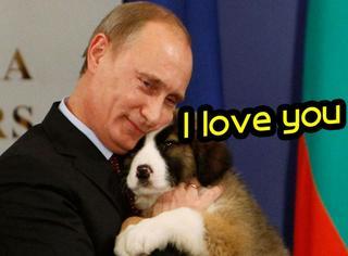 """普京被调侃成""""送狗大帝"""",他的爱全被狗狗占据了!"""