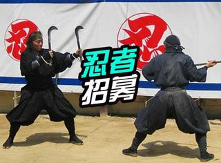 日本招募全职忍者:要求会后空翻!月薪过万!