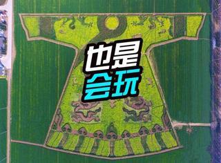"""村里人才会玩,南京龙袍乡农民油菜花地种出巨型""""龙袍""""!"""