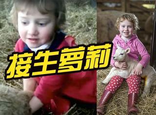 英国3岁萝莉给小羊接了个生,网友:职业规划从娃娃抓起
