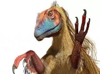 恐龙的真实形象:人类可能想岔了