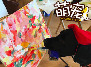 【萌宠】这只会作画的汪星人被称作狗界达芬奇!